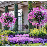 Longwood Gardens Admission ONLY $9