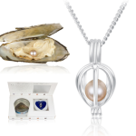 1SaleADay: Clam Shell Pearl, Flat Iron, iPod Speaker and More
