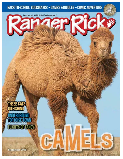 Ranger Rick Magazine - 44% off the Cover Price