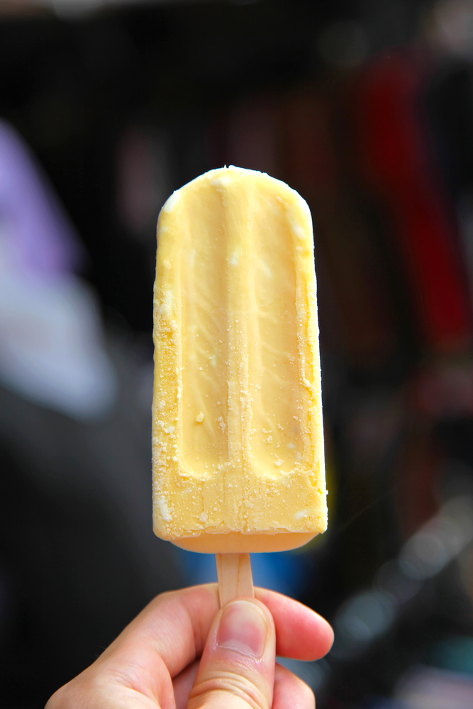 Easy Homemade Popsicle Recipes – Perfect For Kids