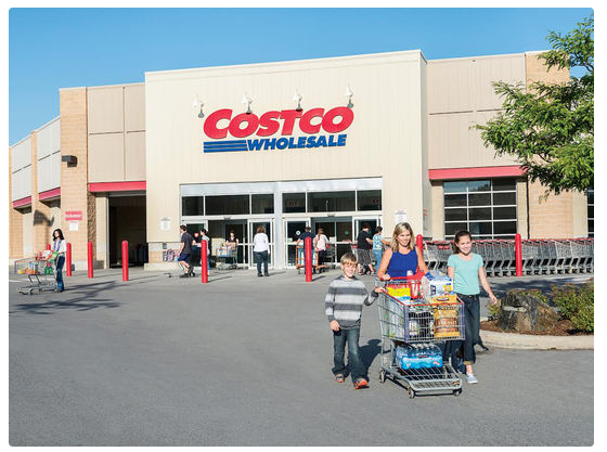 costco introduction Conclusion costco wholesale owes their rising success to the unique business model developed by sol price throughout costco's history they have strived to connect with families and local businesses by offering products in large quantities at a low price.