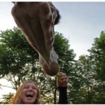 Elmwood Park Zoo Admission – 47% Off Regular Ticket Price