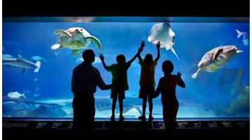 Adventure Aquarium Admission – 31% off Regular Ticket Price