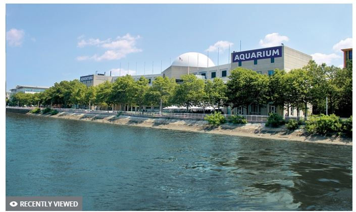 Adventure Aquarium Admission - 27% off Regular Ticket Price