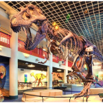Academy of Natural Sciences Admission Tickets up to 51% off Regular Price