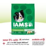 Save Big on IAMS Dog Food at Target
