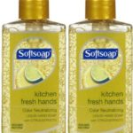 $3 Moneymaker on Softsoap Liquid Hand Soap at Giant