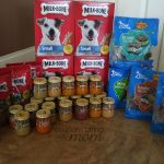Giant Shopping Trip: $77 Worth of Blue Bunny, Milk-Bone and More FREE + $15.78 Moneymaker